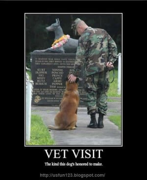 Funny Memorial Day Quotes Funs Mix