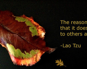 Handmade Bookmark -- Fallen Leaf -- Lao Tzu Quote Laminated Photo ...