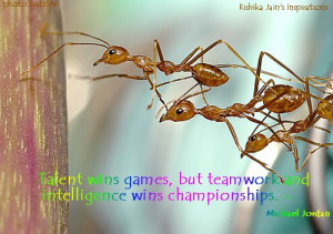 Teamwork Inspirational Quotes