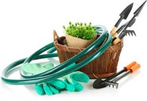 Gardening Services Clacton & Colchester