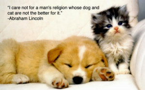 Cute Animals with Funny Sayings