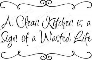 Clean Kitchen is a Sign of a Wasted Life