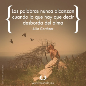 Julio Cortazar, Frases, Palabras