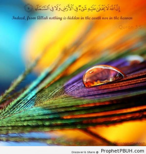 From Him nothing is hidden - Islamic Quotes About Allah's Omniscience ...