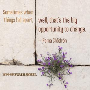 mindfulness quote pema chodron
