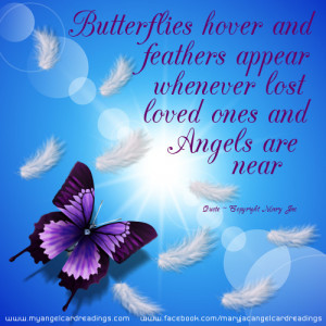 ... And Feathers Appear Whenever Lost Loved Ones And Angels Are Near