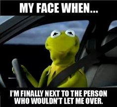 Kermit the frog driving More