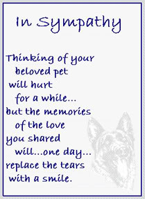 Pet Memorial Sayings Quotes http://www.sympathy-sayings.com/pet ...