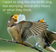 quotes about singing birds quotesgram