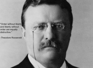 Teddy Roosevelt Quotes HD Wallpaper 2