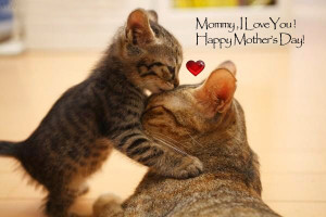 Top Mother's Day Inspirational Quotes, Sayings, Images, Messages ...