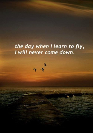 Myspace Graphics > Life Quotes > the day when i learn to fly Graphic