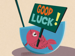 ... good #luck #goodluck #bestwishes #fish #bowl #dive #pink: Luck Today