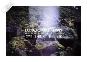 Extraordinary Things Are Always Hiding Quote