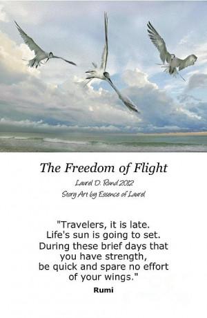 The Freedom Of Flight Print by Laurel D Rund