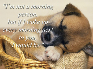 Incredible Good morning animal wallpapers