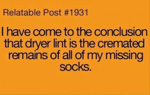 funny socks, dryer lint, quotes