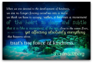 Sharon Salzberg's gorgeous quote. This would be such a pretty canvas ...
