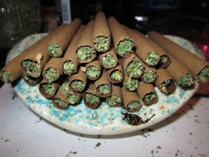mmj-blunts-cannabis-blunts-marijuana-blunts-thcfinder.jpg