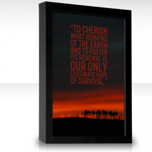 wendell berry quotes | To cherish what remains of the Earth and to ...