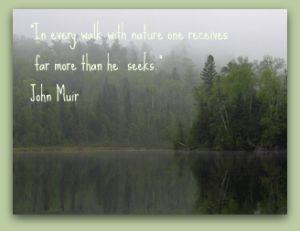 John Muir ~ nature