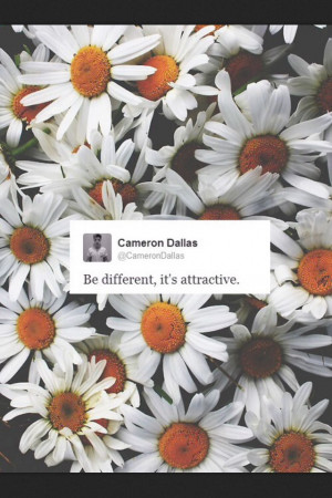 ... Twitter, 26Mgts Quotes, Magcon Quotes Tweets, Cameron Quotes, Cam