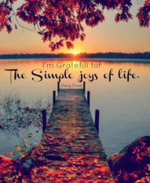 the-simple-joys-of-life-grateful-quotes.jpg