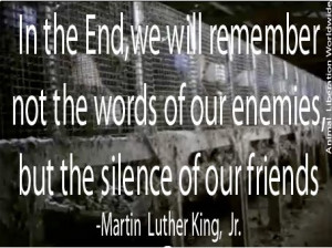In the end, we will remember not the words of our enemies, but the ...