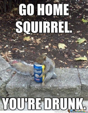 drunk-squirrel-is-drunk_o_904990.jpg