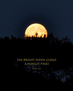 Moon Love Quotes Full moon, bright moon amongst
