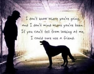 Beautiful quote about dogs