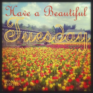 171880-Have-A-Beautiful-Tuesday-Quote.jpg