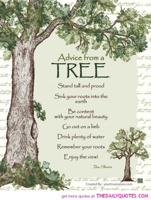 ... tree life quotes sayings pictures.jpg in Best quotes tree of life