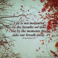 Life is not measured by the breaths we take Life Quotes
