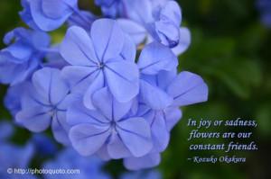 Sayings, Quotes: Kozuko Okakura