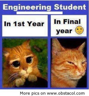 civil green engineer joke | Engineering Students Quotes
