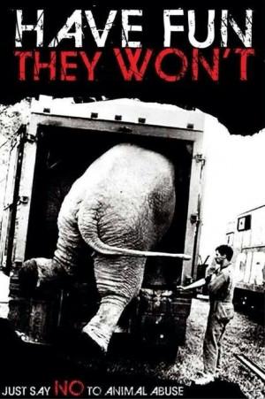 Anti-circus, elephant abuse. NO LIVE ANIMALS CIRCUSES! GET YOUR KICKS ...