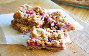 healthy-apple-and-berry-fruit-bars.jpg