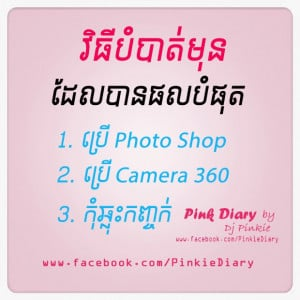 Credit And Source Pink Diary Pinkie