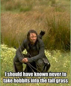 funny pictures, lord of the rings