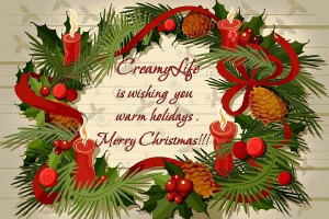 Merry Christmas Wishes Quotes to Friends and Family | Merry ...