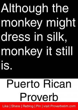 ... in silk, monkey it still is. - Puerto Rican Proverb #proverbs #quotes