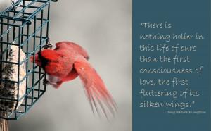Valentine's Week: Wild Birds