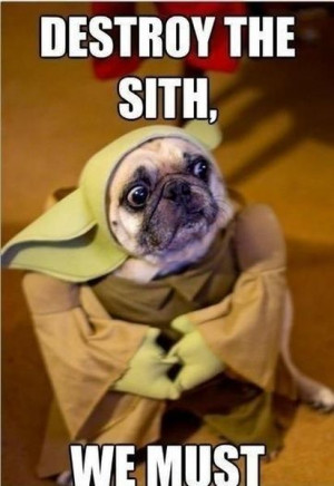 Destroy The Sith - Funny pictures
