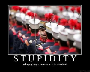 Funny Stupid (22)