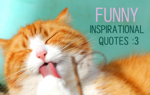 19 Funny Inspirational Quotes to Laugh Your Way to Self Improvement