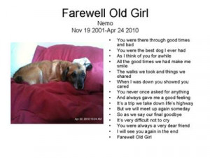 Dog Loss Quotes Your pet loss stories. '