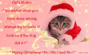 ... =http://www.pics22.com/cat-quote-merry-christmas/][img] [/img][/url