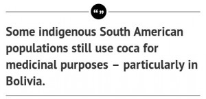 But the coca bush is a tough plant, one that's likely to adapt to ...