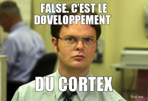 Dwight False Meme